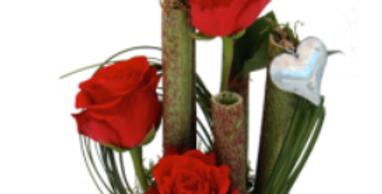 Rubis bambou roses rouges