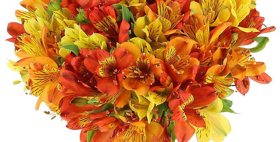 Bouquet d'alstroemérias en mix de couleurs