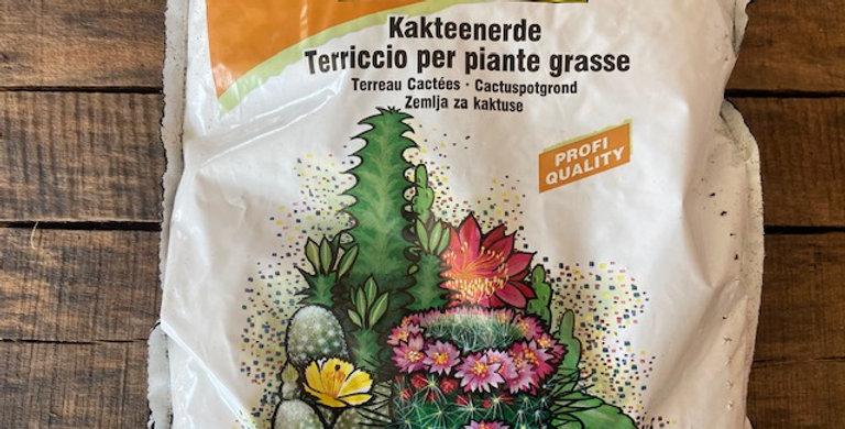 Terreau pour cactée et plante grasse
