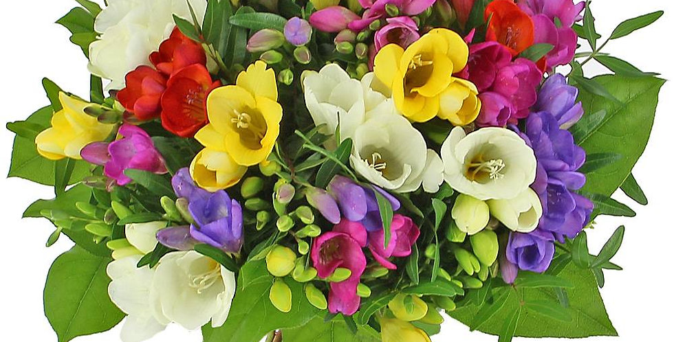 Bouquet de freesias en mix de couleurs