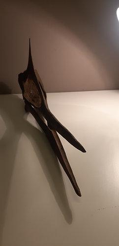Moulage de crâne de ptérosaure maroc