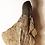 Thumbnail: Dent de Camarasaurus lentus