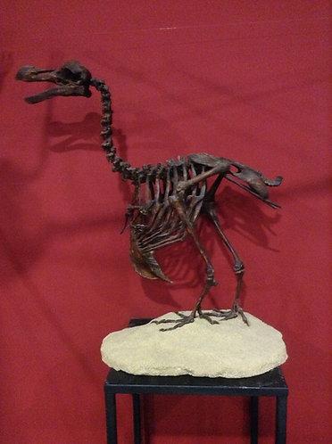 Moulage de Dodo à vendre