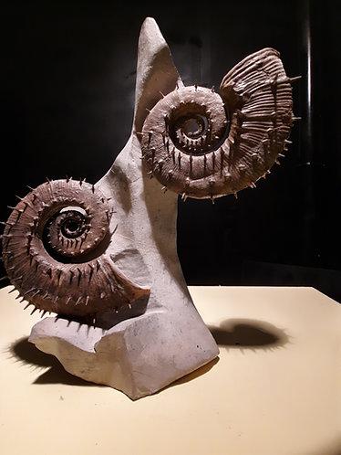 Ammonite Emericiceras Emerici Age ; Barrémien Localité : Sisteron, France