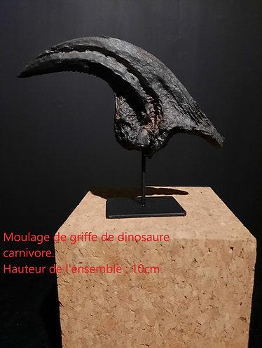 moulage de dinosaure carnivore