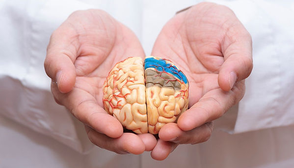 1140-alzheimers-what-we-know.web.jpg