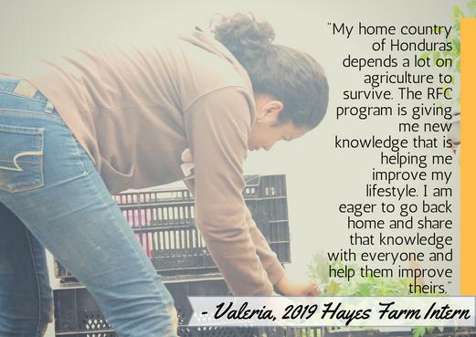 Valeria's testimonial