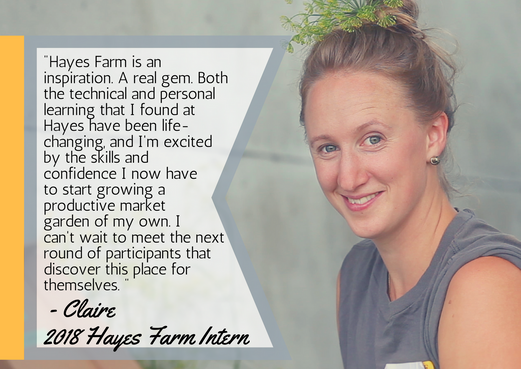 Claire's testimonial