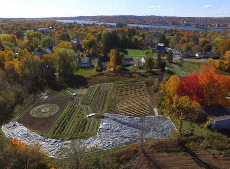 Regenerative Farming Supports Local Food Distribution