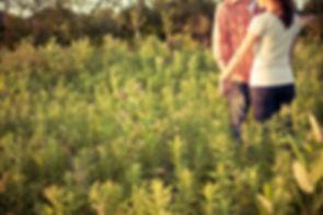 couple in field.jpeg