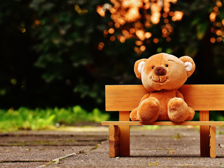 Why You Need A Teddy Bear Now!