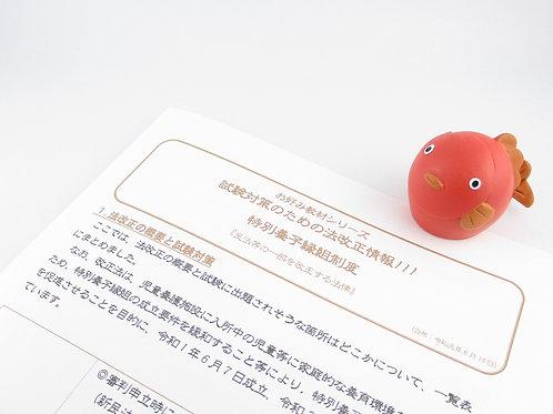 お好み教材シリーズ『試験対策のための法改正情報!!! 特別養子縁組制度』H2004