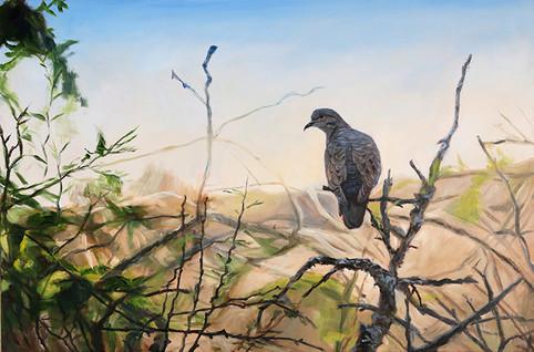 Dallas Bird Painting
