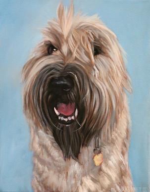 Custom Dog Painting Scottsdale