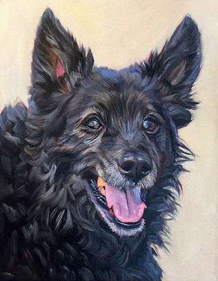 Handmade dog painting by David Kennett