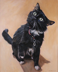 BFF Pet Paintings Cat | Chicago