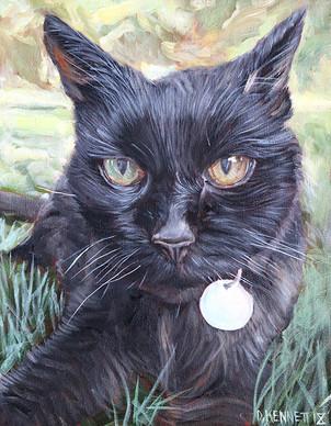 Hand-painted Cat Portrait Phoenix