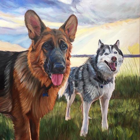 Husky & German Shepard Dog Painting