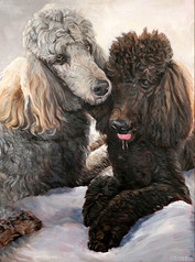 BFF Pet Paintings Poodle Portrait