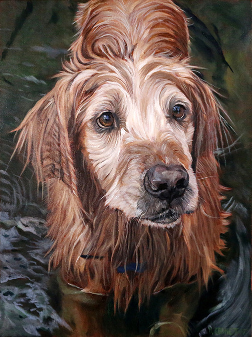 Realistic dog portrait Tampa