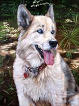 Hand-painted Dog Portrait Austin