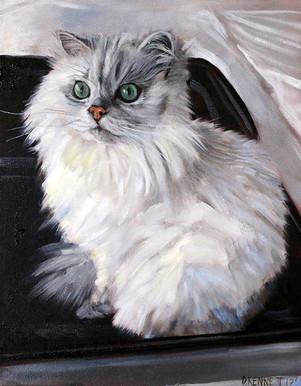 Realistic Cat Portrait Las Vegas