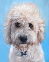 Custom Dog Portrait Boston