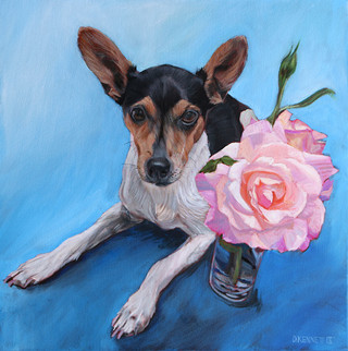 Boston Dog Portrait