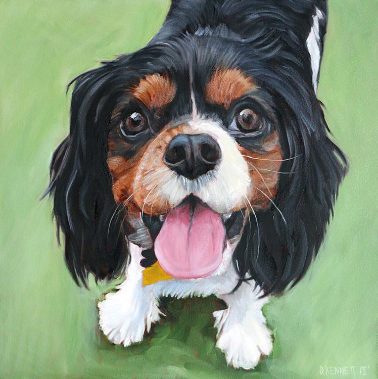 Dog Portrait Scottsdale