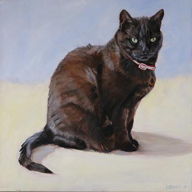 Custom Cat Painting San Diego
