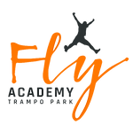 Fly academy Logo Full quality - No backg