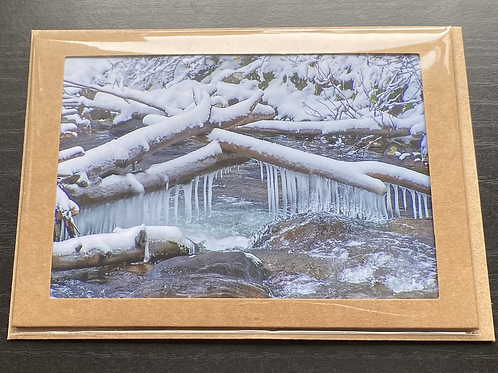 Winter Willow Creek Photo Note Card