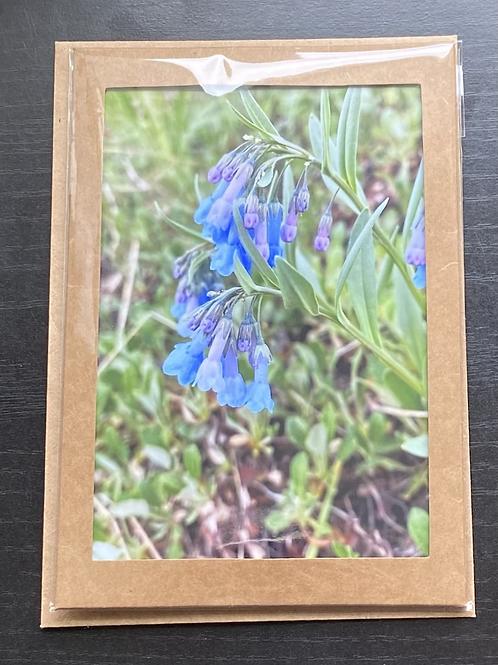 Blue Bells Wildflowers Photo Note Card