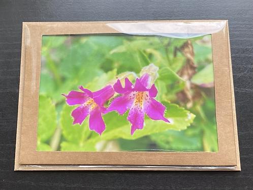 Pink Monkey Wildflower Photo Note Card
