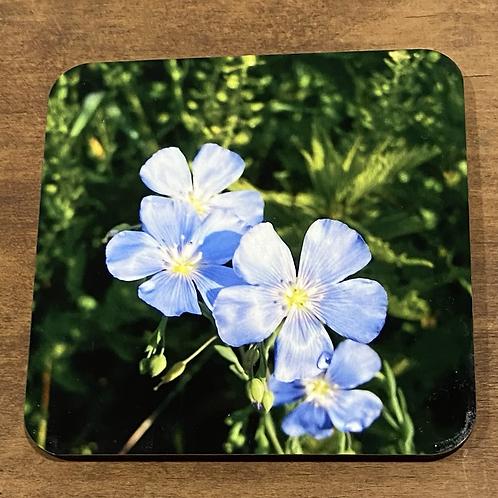 Blue Flax Wildflower Coaster