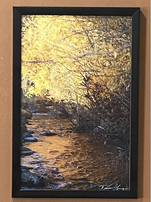 Golden Light In Autumn- 11x17 Framed Poster Print