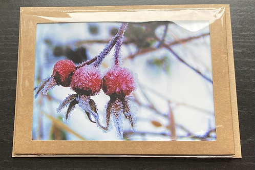 Frosted Rose Hips Photo Note Card