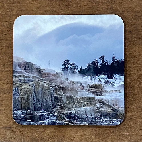 Yellowstone Park Coaster