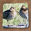 Thumbnail: Wilson Snipes Coaster