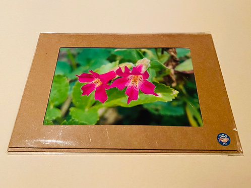 Pink Monkey Flower Note Card
