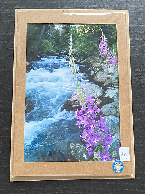 Willow Creek and Fireweed Photo Note Card