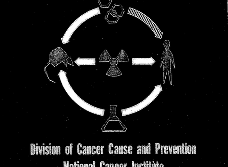 The Special Virus-Cancer Program (SVCP): Engineering an Abomination of Science and Public Health
