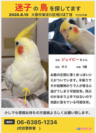 image0(25).jpeg