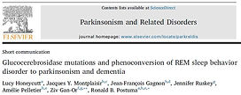 GBA conversion PRD.JPG