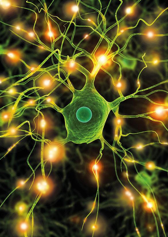 Aktivität der Zellen mit Flashwave.jpg