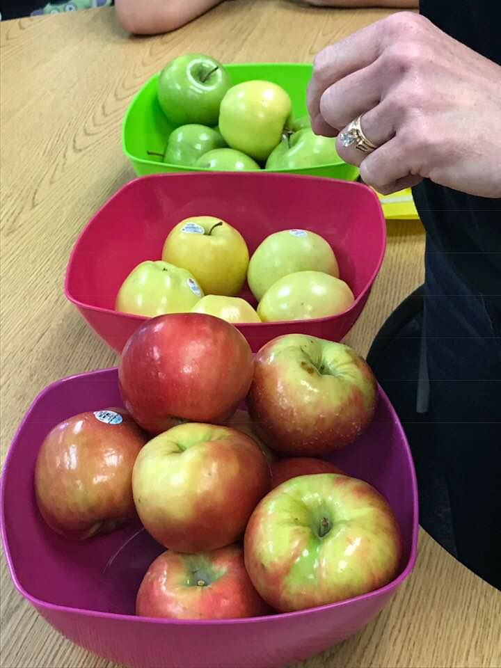 bowls of apples.jpg
