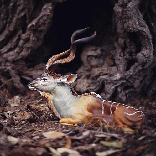 Kudu Planter/Jewelry Holder