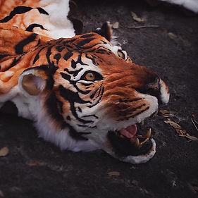 faux taxidermy tiger rug
