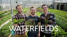 Waterfields