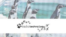 Tracks Technology